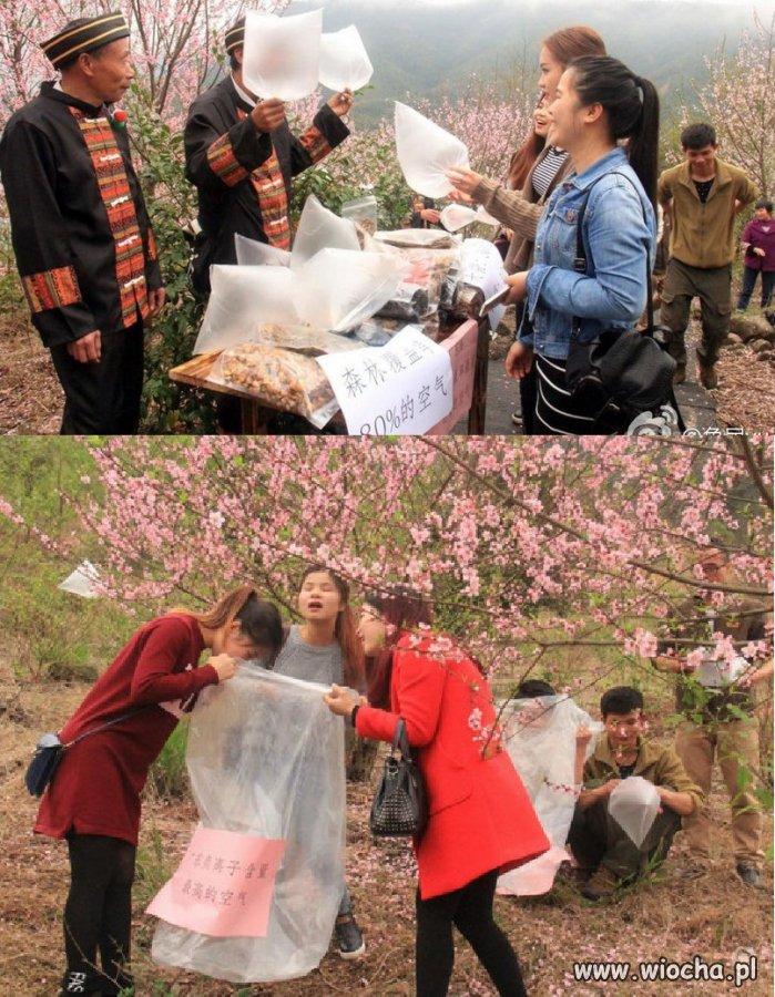 W Chinach sprzedają świeże powietrze miastowym