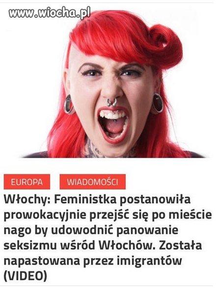 Logika feministek.