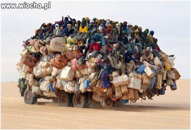 Autobus jeden na tydzień