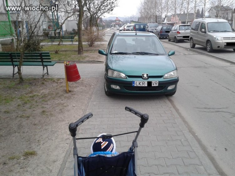 Mistrz parkowania