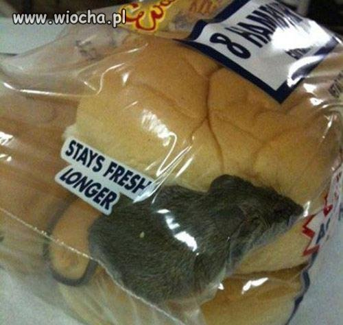 Bułeczki hamburgerowe