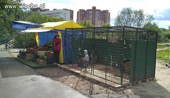 W Rosji dzieci też mają wakacje