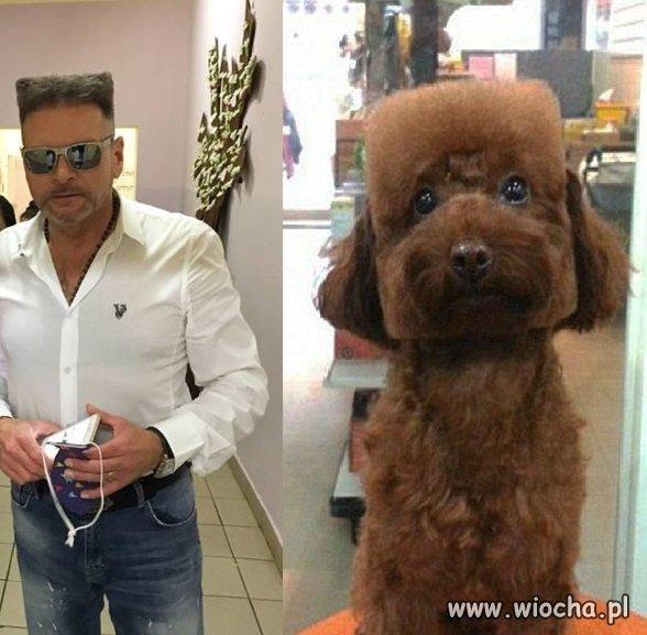 K-9 Detektyw i jego pies