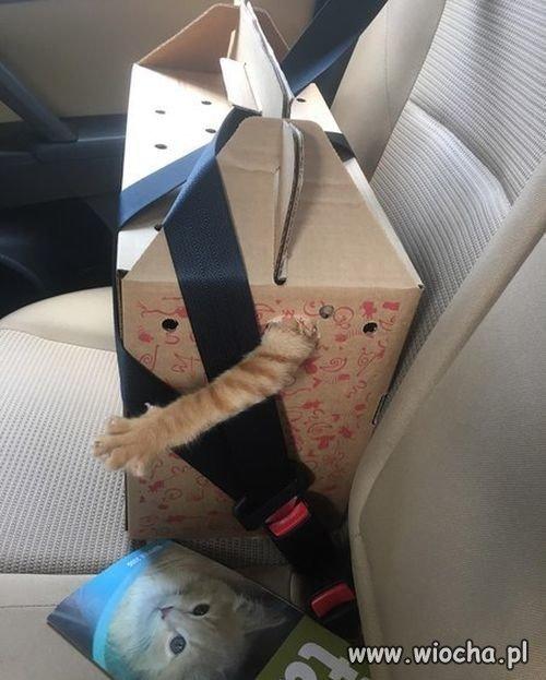 Bezpieczny transport