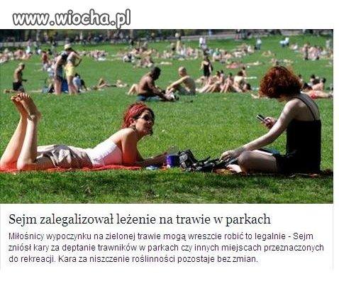 Sejm zalegalizował  leżenie na trawie.