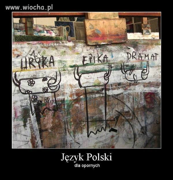 Język Polski...