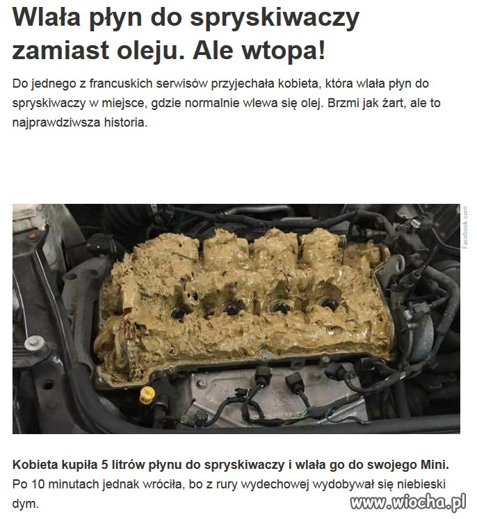 http://img.wiocha.pl/images/5/b/5bdc5d3a7fb5cfc6948324b86b3d85da.jpg