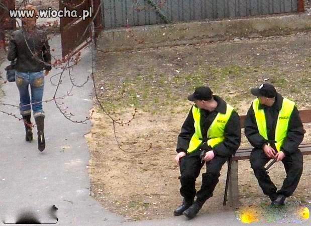 Nasza policja.