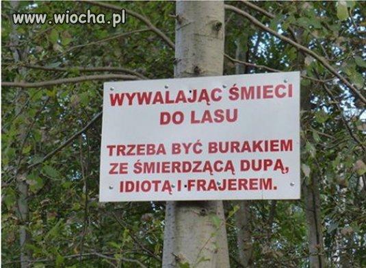 Przy wejściu do pewnego lasu