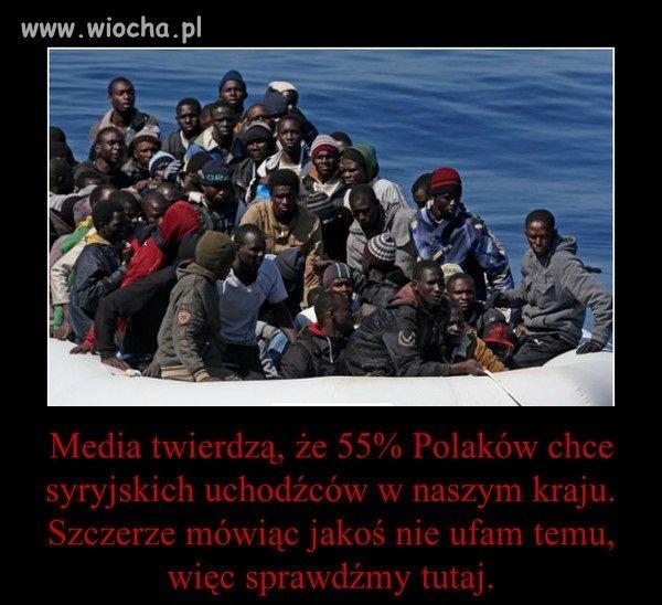 Uchodźcy nie są nam absolutnie do niczego potrzebni.