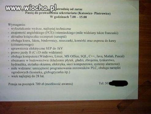 Oferta pracy dla sekretarki
