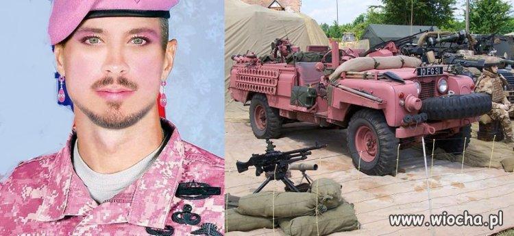 W Szwecji powraca obowiązek służby wojskowej.