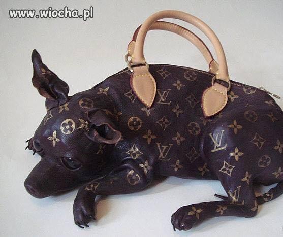 Pojemnik na psa