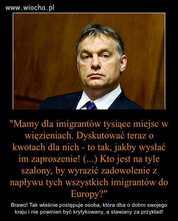 Brawo panie Orban! Wielki szacun!
