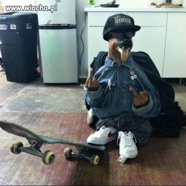 Gangsta pies
