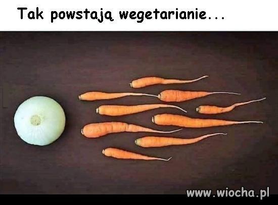Tak powstają wegetarianie