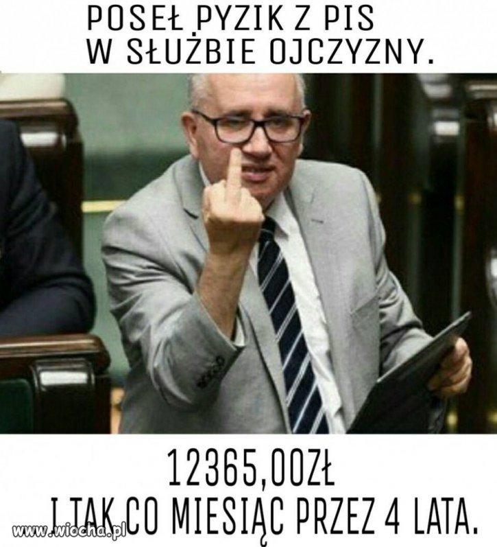 Pisowski kozak