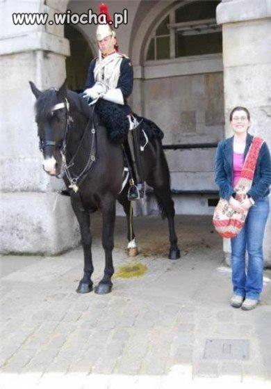 Zdjęcie przy szczającym koniu