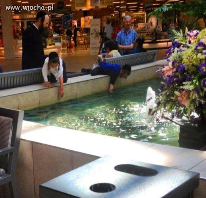 Była sobie z pieniążkami na dnie fontanna...