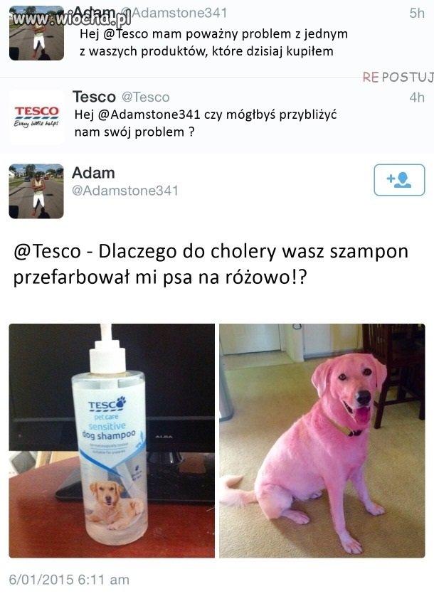 Jaki szampon taki efekt