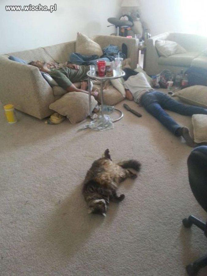 Jak wszyscy to wszyscy,nawet kot pijany