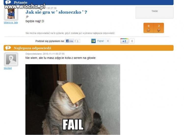 Kot z serem na głowie.