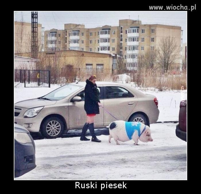 A w Rosji chyba dlatego nie mają problemu