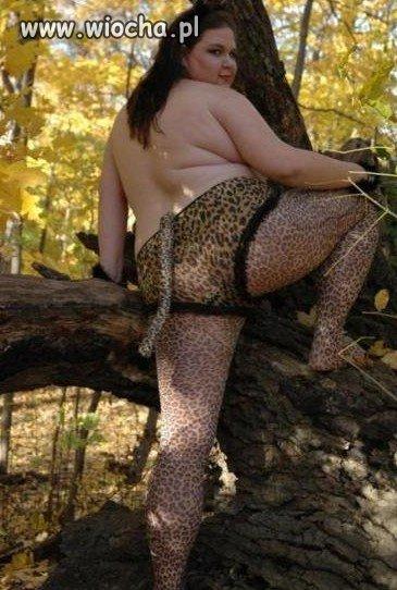 Gorąca kocica w lesie.