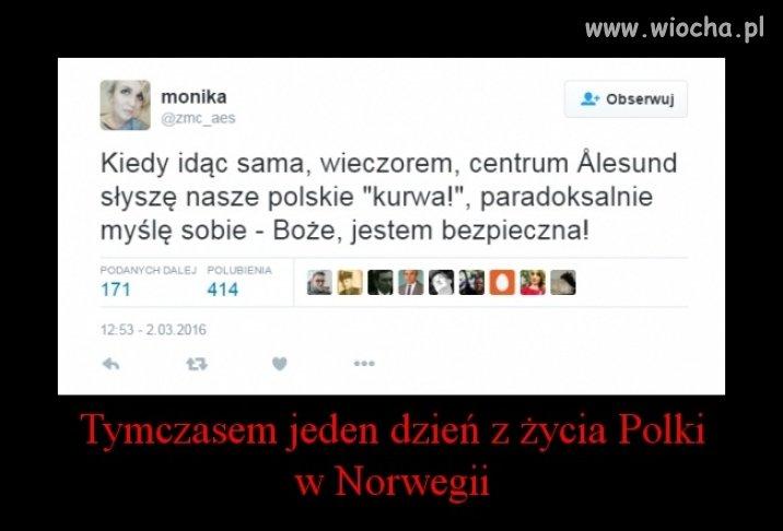 Polka w Norwegii ...