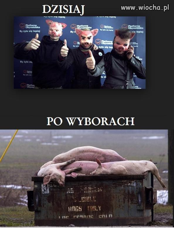 Polacy już wiedzą jak głosować.