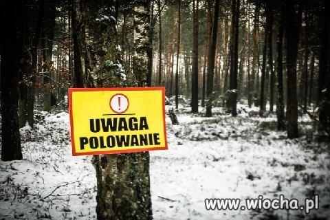 Polska pod dyktatem partii myśliwych?
