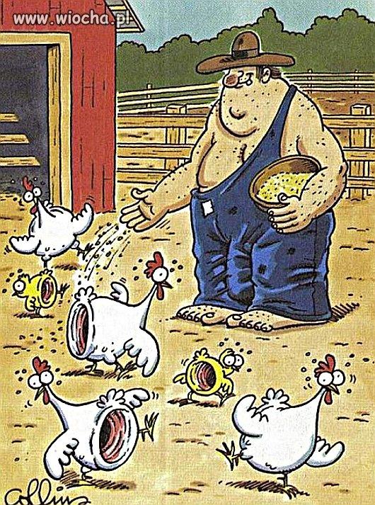 Samotny rolnik...