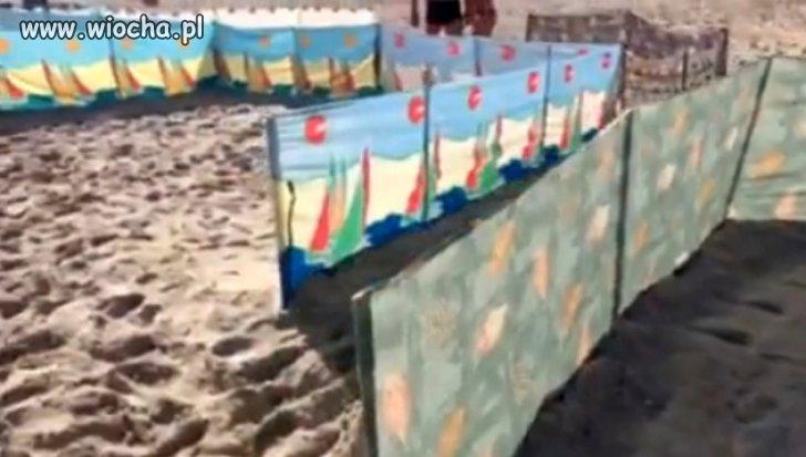 Plaża zarezerwowana parawanami od 6 rano