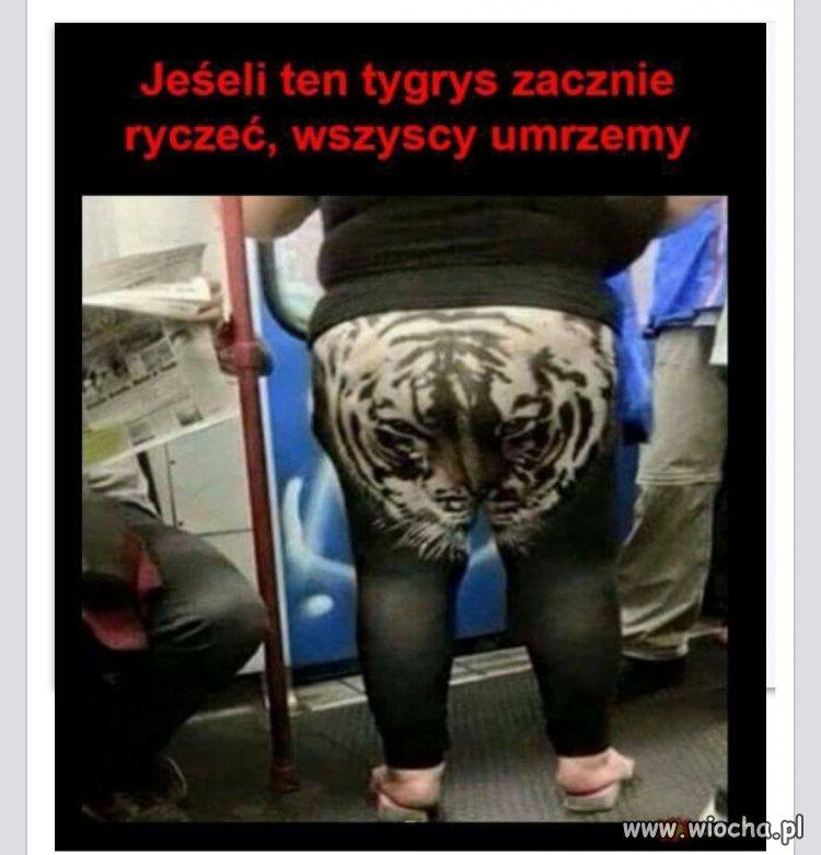 Jak lew ryknie
