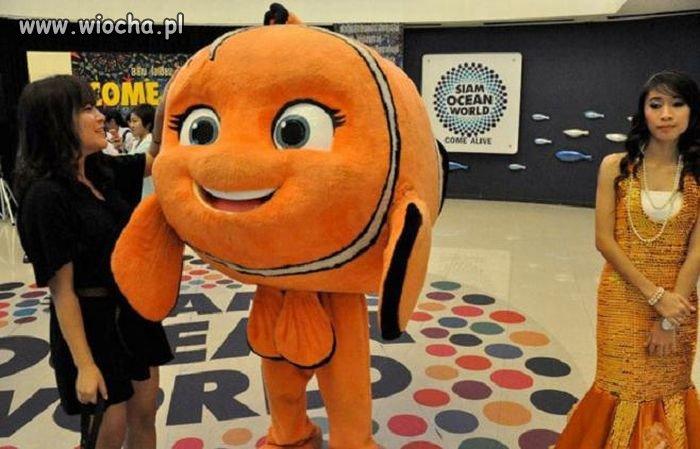 Chyba dziwny ten Nemo ?