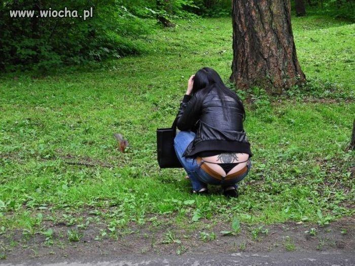 O wiewiórka ...