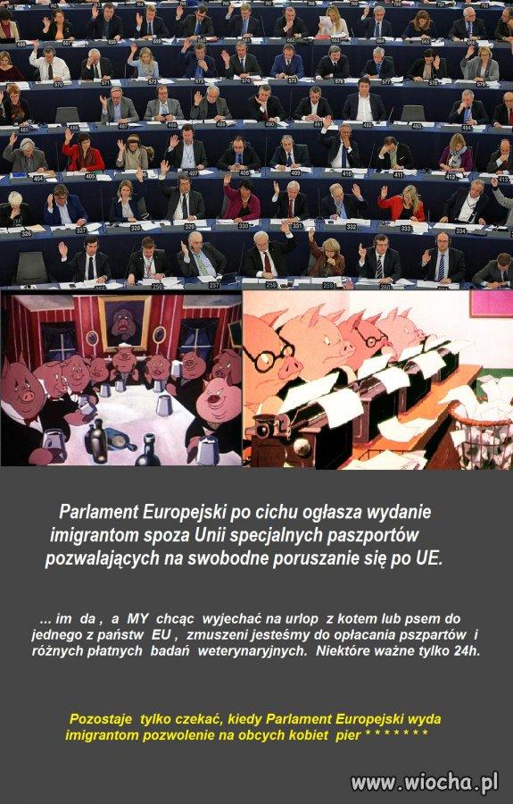 Nielegalni  imigranci otrzymają za darmo paszporty