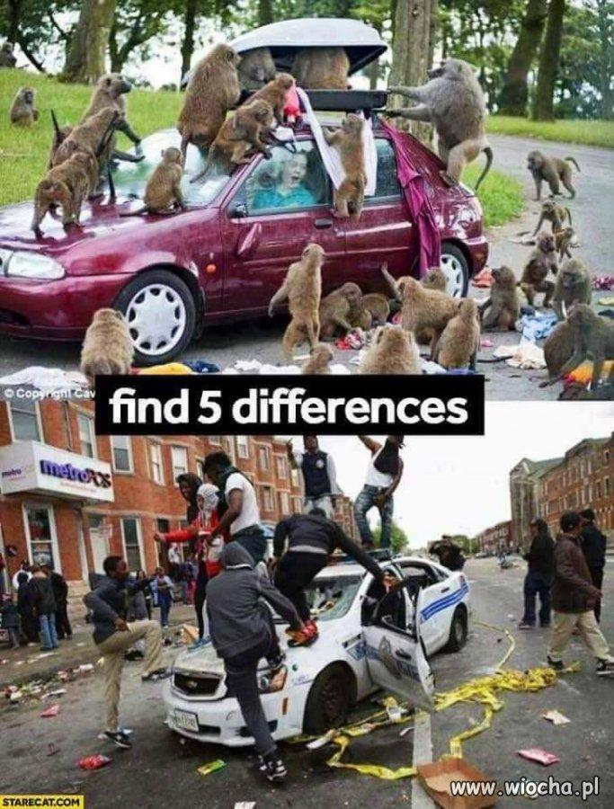 Znajdź 5 różnic.