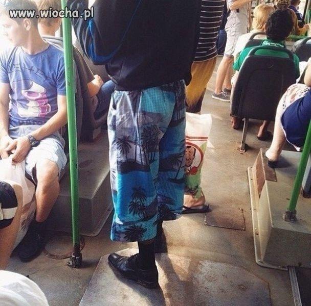 Moda autobusowa poziom master
