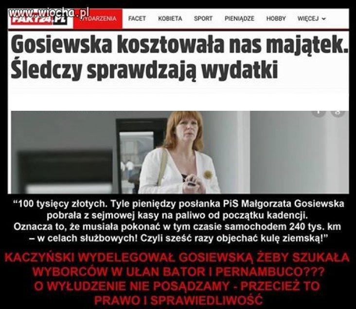 Tak... To ta sama Gosiewska co chlała z Ukraińcami