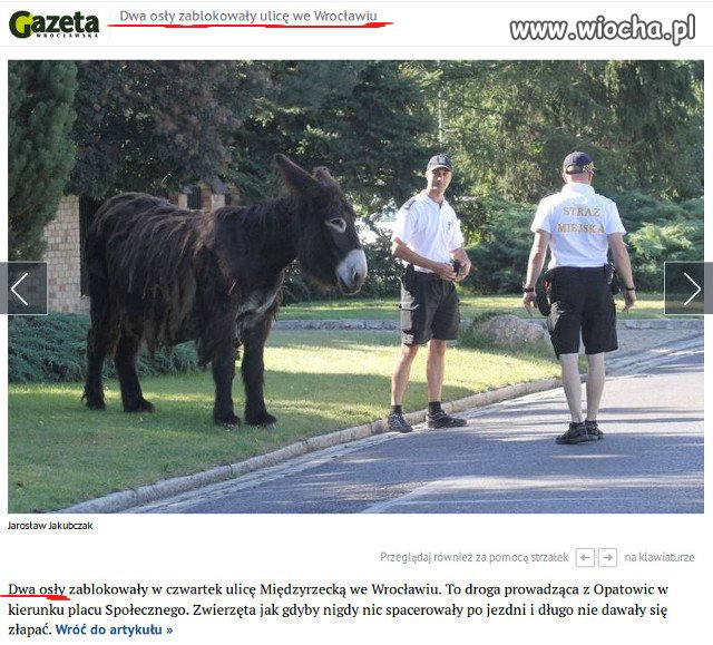 Gazeta Wroc�awska