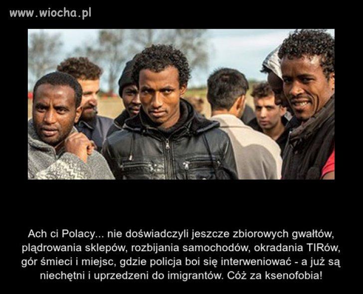W Polsce to...