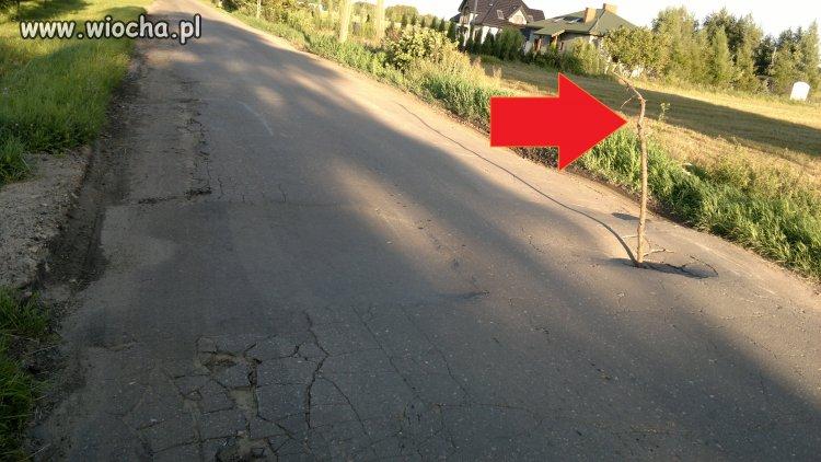 Nie ma kasy na asfalt to i nie ma na pachołki