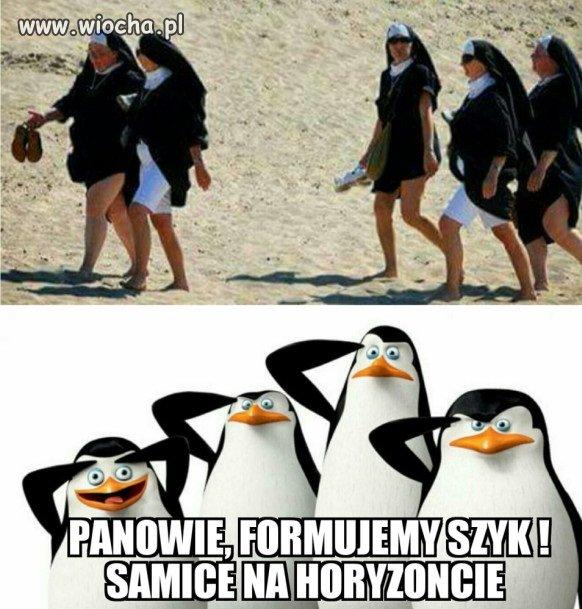Plażą szły zakonnice...