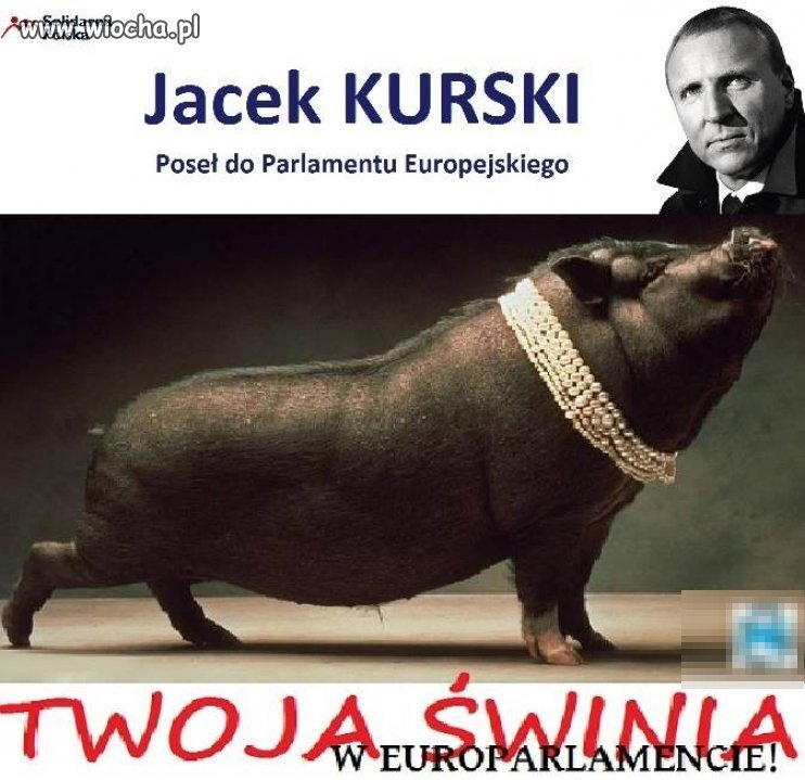 Plakat wyborczy Solidarnej Polski.
