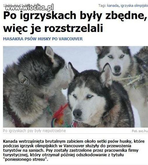 Igrzyska zakończone, psy niepotrzebne