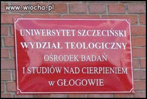 Cierpienie w Głogowie