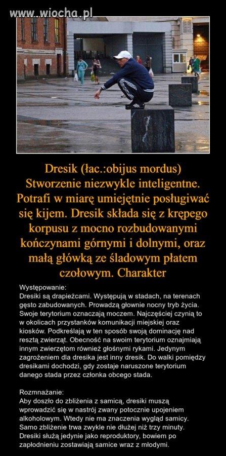 Czytała Krystyna Czubówna ...