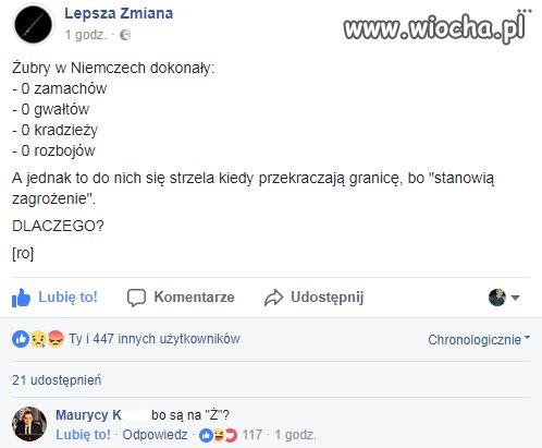 Kiedy polski żubr przekracza niemiecką granicę