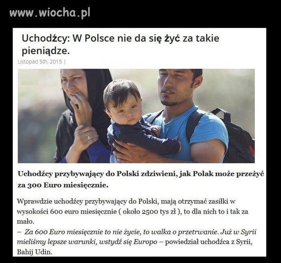 Tymczasem uchodźcy odkrywają Polskę